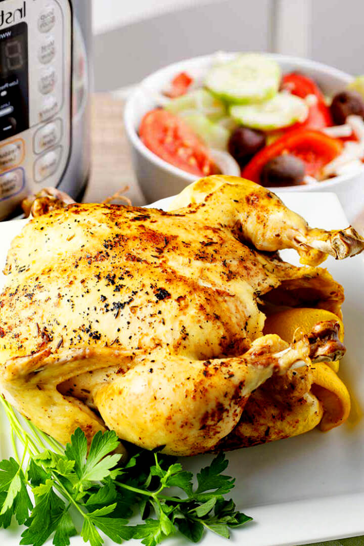 Chicken Recipe Instant Pot Duo Plus